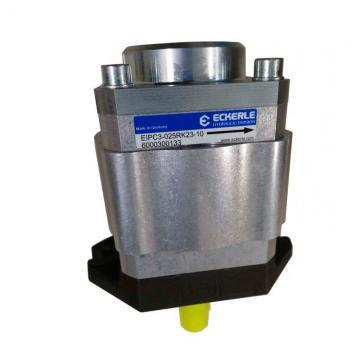Parker PV2R1-17 PV2 Pompe