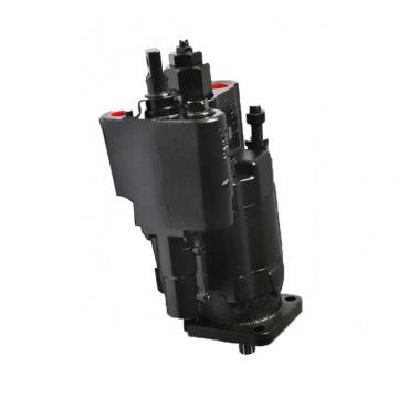 Parker PV2R1-10 PV2 Pompe