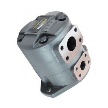 Parker SQP2-25-1C SQP Pompe