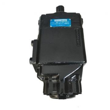 Parker YB1-80 YB1 pompe à palettes