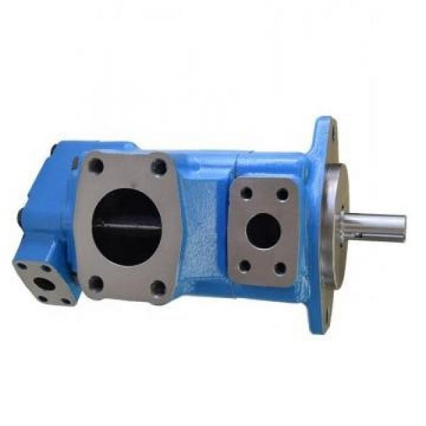 Vickers PV063R1K1B4NKLB+PGP620A0330CD1 PV 196 pompe à piston #1 image