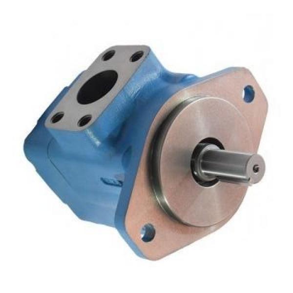 Vickers PV063L1E3T1NFWS4210 PV 196 pompe à piston #1 image