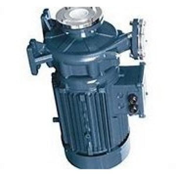 TOKYO KEIKI P31V-FRS-11-CMC-10-J P pompe à piston #1 image