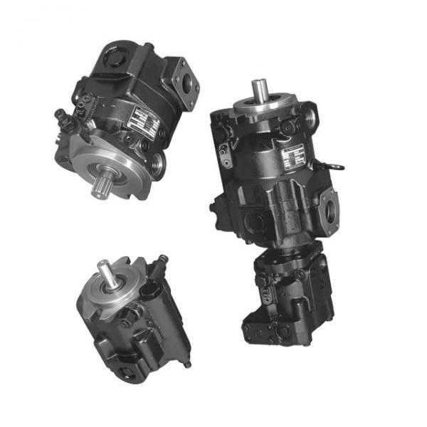 Parker PV2R2-41 PV2 Pompe #1 image