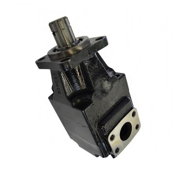 Parker T6E-042-1R00-A100 T Pompe #1 image