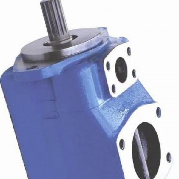 Vickers PV063R1K1A4NFHS+PGP511A0180CA1 PV 196 pompe à piston #1 image