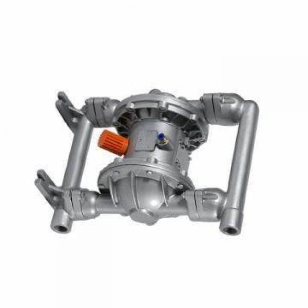 Vickers PV046R1K8T1NMRZ+PVACZ1NS35+D1V PV 196 pompe à piston #1 image