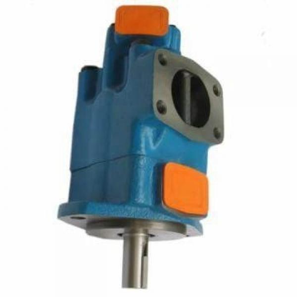 Vickers PV063R1K1A4NFWS+PGP505A0100CA1 PV 196 pompe à piston #1 image