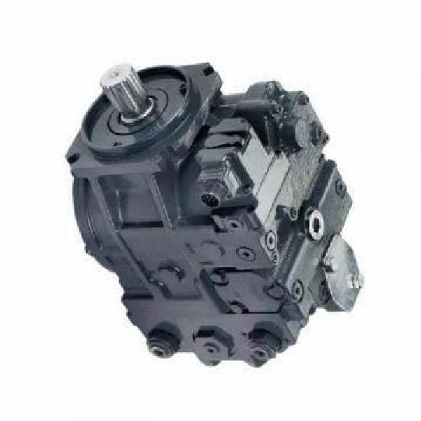 Vickers PV063R1K1A4NFFZ+PGP511A0+PVAC1 PV 196 pompe à piston #1 image