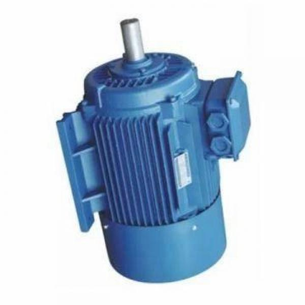 Vickers PV046R1L1T1NUPG4545 PV 196 pompe à piston #1 image