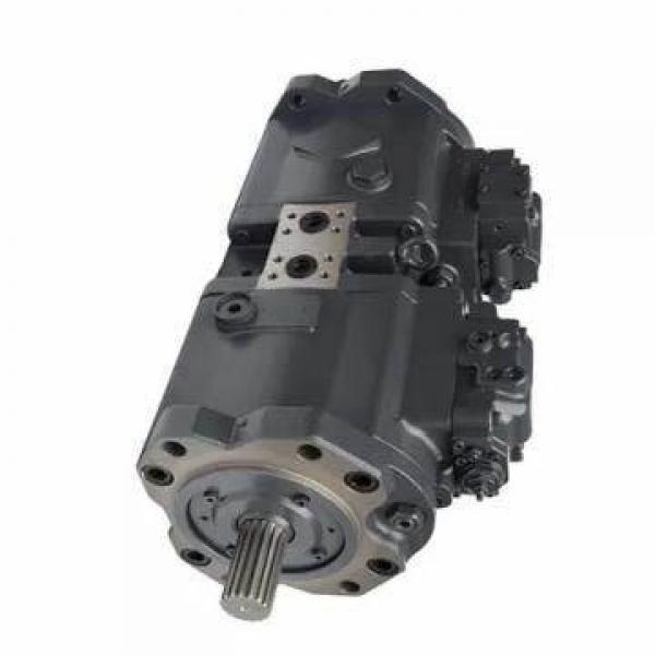 Vickers PV063R1K1A4NFTZ+PVACPPT+PGP511 PV 196 pompe à piston #1 image
