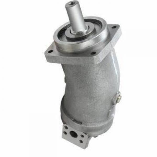 Vickers PV063R1K1K3NHCD+PV032R1L1T1NDL PV 196 pompe à piston #1 image